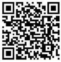西柚资讯APP转发文章高单价0.5元,满5元提现 西柚资讯 西柚资讯APP 微信红包 活动线报  第2张