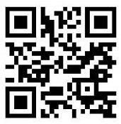 全民养龙玩游戏看广告升级送最少0.3元微信红包 赚钱App 全民养龙 微信红包 活动线报  第2张